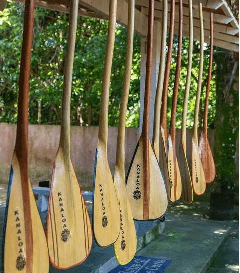 Remos de Canoa Havaiana Arte em Madeira VAA